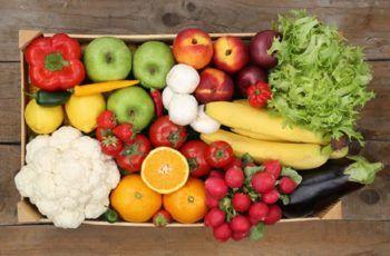 Alimentos de la dieta Plant Based